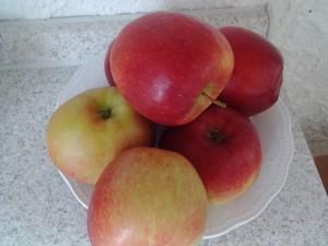Äpfel auf Schale